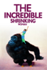 Joel Schumacher - The Incredible Shrinking Woman  artwork