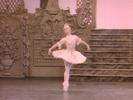 The Nutcracker: Dance of the Sugar Plum Fairy (Extract)