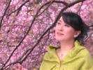 Negawakuba Sakurano Shitade - Mika Hino