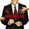 The Bachelor, Season 14 wiki, synopsis
