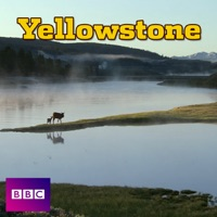 Télécharger Yellowstone (VF) Episode 3