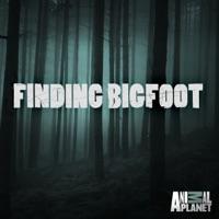 Télécharger Finding Bigfoot, Season 5 Episode 13