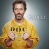 House, Season 8 - Synopsis and Reviews