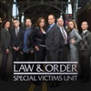 Law & Order: SVU (Special Victims Unit), Season 10 wiki, synopsis