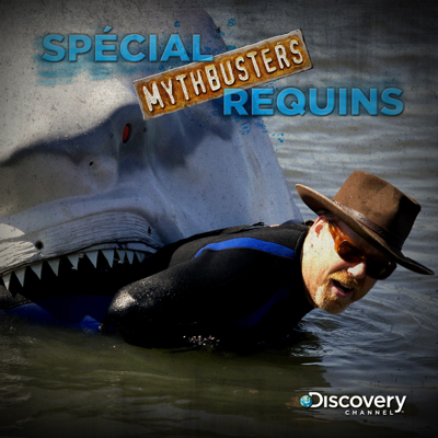 Mythbusters : spécial requins - Mythbusters : spécial requins