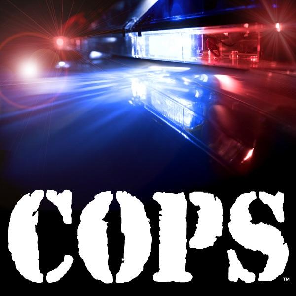 Cops Season On ITunes - Bait car tv show