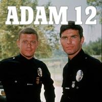 Télécharger Adam 12, Season 1 Episode 12