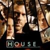 House, Season 1 wiki, synopsis