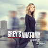 Rentrée des classes - Grey's Anatomy