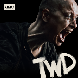 The Walking Dead, Season 10 Synopsis, Reviews