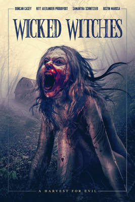 Wicked Witches - Martin J Pickering & Marc Pickering