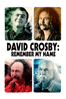 AJ Eaton - David Crosby: Remember My Name  artwork