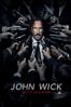 John Wick: pacto de sangre - Chad Stahelski