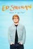 Ed Sheeran: Man + Guitar - Finlay Bald
