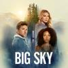 Big Sky - Nowhere to Run  artwork