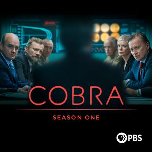 COBRA, Season 1 Synopsis, Reviews