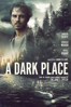 Simon Fellows - A Dark Place  artwork