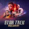 Star Trek: Discovery - Bruder  artwork