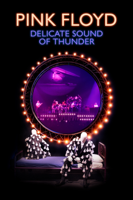 Pink Floyd - Delicate Sound of Thunder artwork