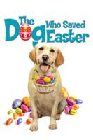 Sean Olson - The Dog Who Saved Easter artwork