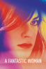 Sebastián Lelio - A Fantastic Woman  artwork
