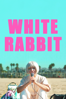 Daryl Wein - White Rabbit  artwork