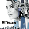 Grey's Anatomy - Judgment Day  artwork