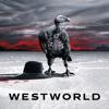 Voyage dans la Nuit - Westworld