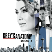 Grey's Anatomy, Saison 14