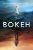 Geoffrey Orthwein & Andrew Sullivan - Bokeh  artwork