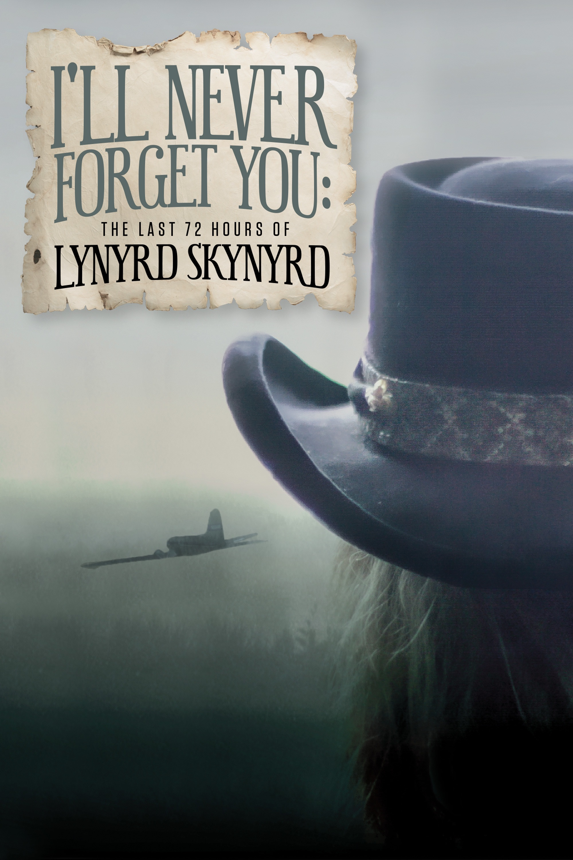 I'll Never Forget You: The Last 72 Hours of Lynyrd Skynyrd (DVD)