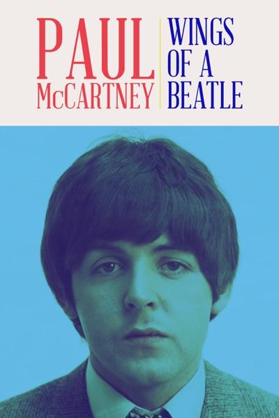Matt Salmon - Paul McCartney: Wings of a Beatle