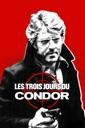 Affiche du film Les trois jours du condor