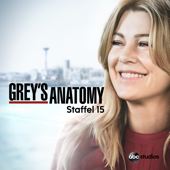 Grey's Anatomy, Staffel 15