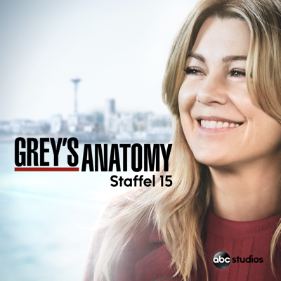 Grey's Anatomy, Staffel 15 - Grey's Anatomy