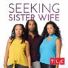 Don't Go Breaking My Heart - Seeking Sister Wife