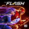 The Flash - The Flash, Season 5  artwork