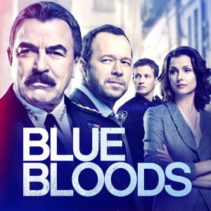 Blue Bloods, Season 9