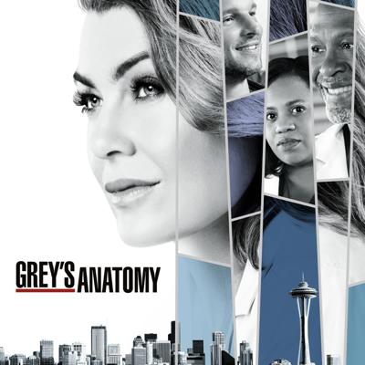 Grey's Anatomy, Season 15 HD Download