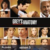 Grey's Anatomy, Saison 5
