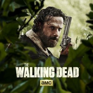 The Walking Dead, Season 5