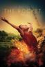 The Rocket - Kim Mordaunt