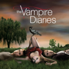 The Vampire Diaries - Family Ties  artwork