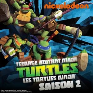 Teenage mutant ninja turtles les tortues ninja liste - Les nom des tortues ninja ...