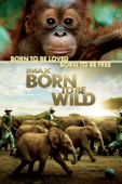 IMAX: Born to Be Wild