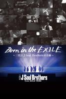 保母浩章 - Born in the EXILE ~三代目 J Soul Brothersの奇跡~ artwork