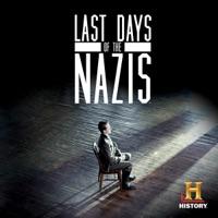 last days cinematography