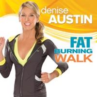 Télécharger Denise Austin: Fat Burning Walk Episode 1