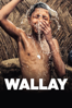 Wallay - Berni Goldblat
