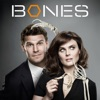 Bones, Season 8 - Synopsis and Reviews
